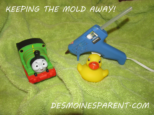 Keep Mold Out of Toys