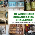 Des Moines Parent 10 Week Home Organization Challenge – Week 4 – Toys