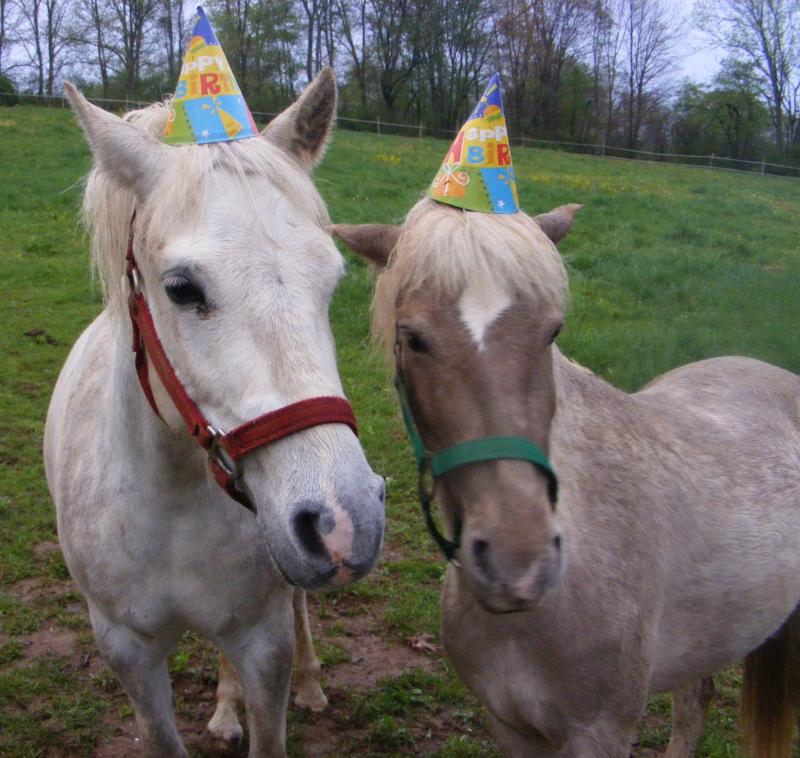 A Realistic Take on Kids' Birthday Parties - Des Moines Parent