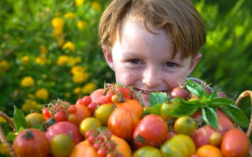 Children, Pesticides and The Dirty Dozen