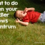What to do when Your Toddler Throws a Tantrum – Humor