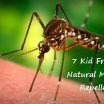 7 Kid Friendly Natural Mosquito Repellents