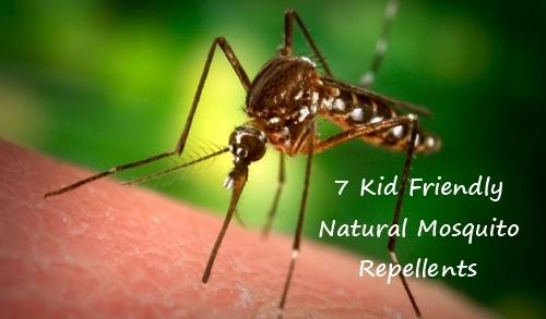 natural_mosquito_repellant