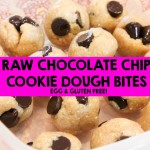Raw Dark Chocolate Chip Cookie Dough Bites Recipe