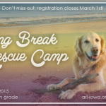 Spring Break Rescue Camp with the ARL