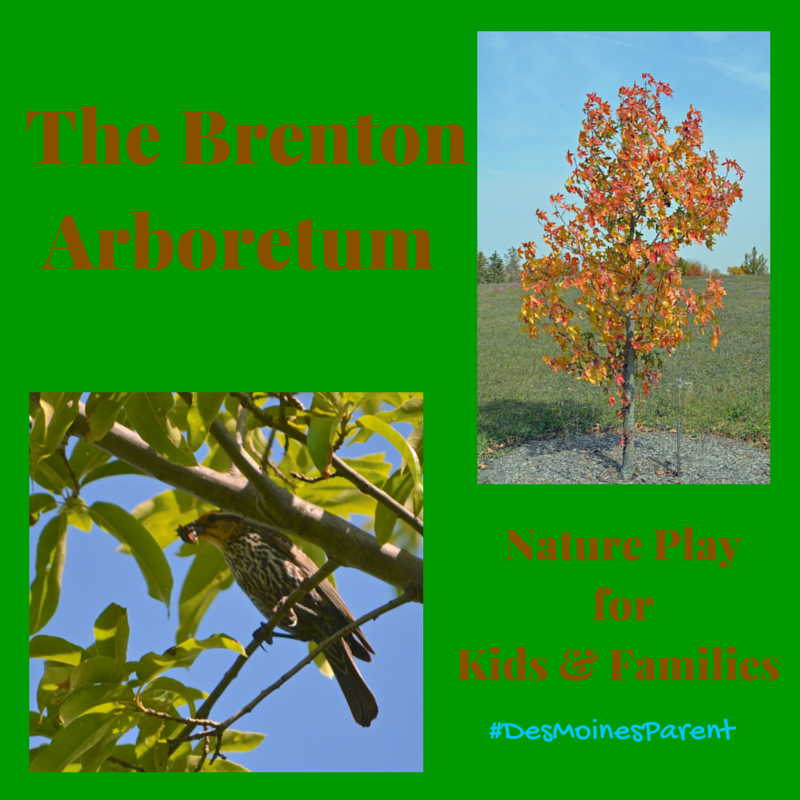 The Brenton Arboretum: Nature Play For Kids & Families