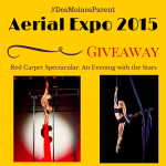 Aerial Expo 2015 & Giveaway!