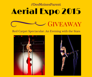 Aerial Expo 2015