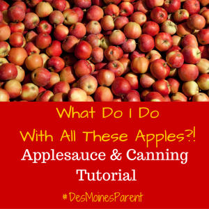 what-do-i-do-with-all-these-apples-300x300