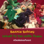 Beanie Babies: What To Do With Them!