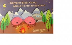 Brain Camp pic