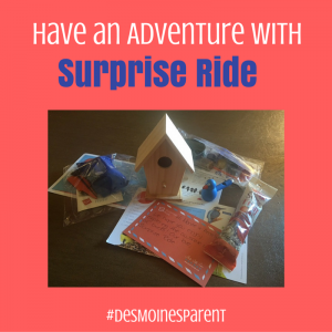have-an-adventure-with-surprise-ride-300x300