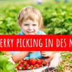 Strawberry Picking in Des Moines