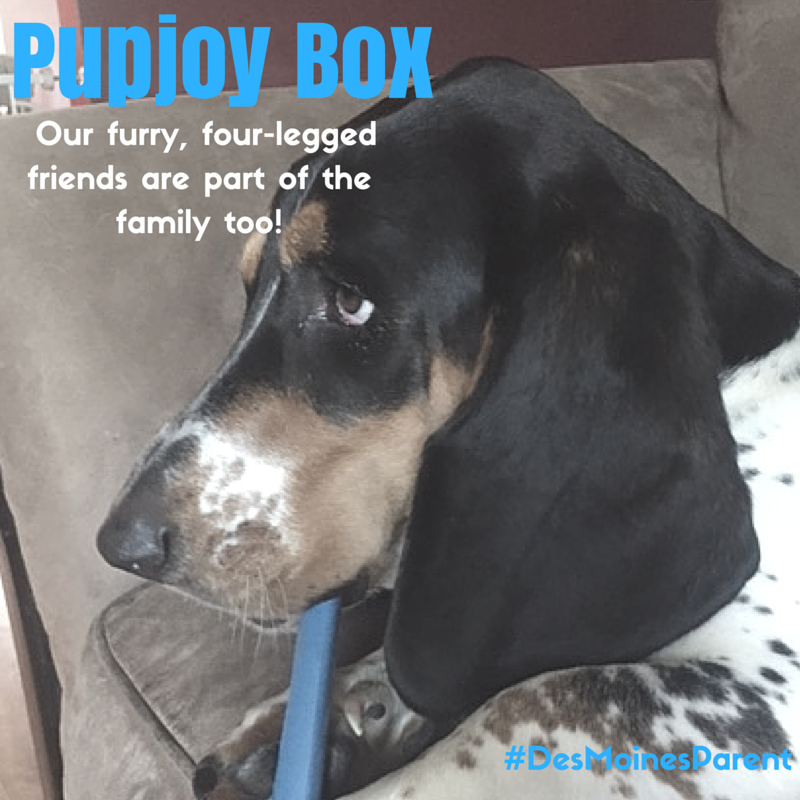PupJoy: A Special Gift For Your Furry Friend
