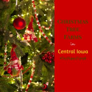 christmas-tree-farms-300x300