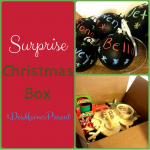 A Surprise Christmas Box!