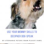 Use Your Mommy Skills to Decipher Dog-Speak