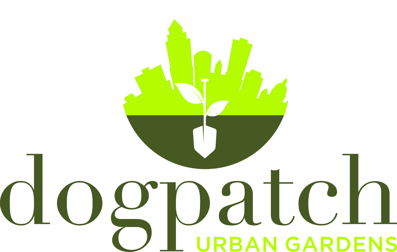 Dogpatch Urban Gardens: Gardening with Kids