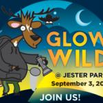 Glow Wild 2017 at Jester Park