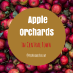 Apple Orchards in Central Iowa