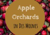 apple orchards, Des Moines, Iowa