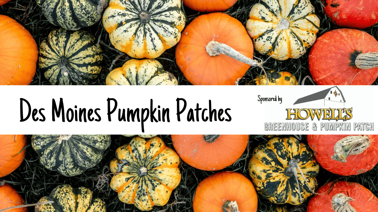Pumpkin Patches in Des Moines