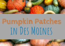 pumpkin patches, Des Moines, Iowa