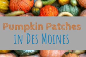 pumpkin patches, Des Moines, Iowa