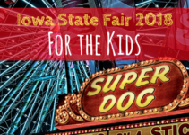 Iowa State Fair, Summer, 2018, Des Moines, Iowa