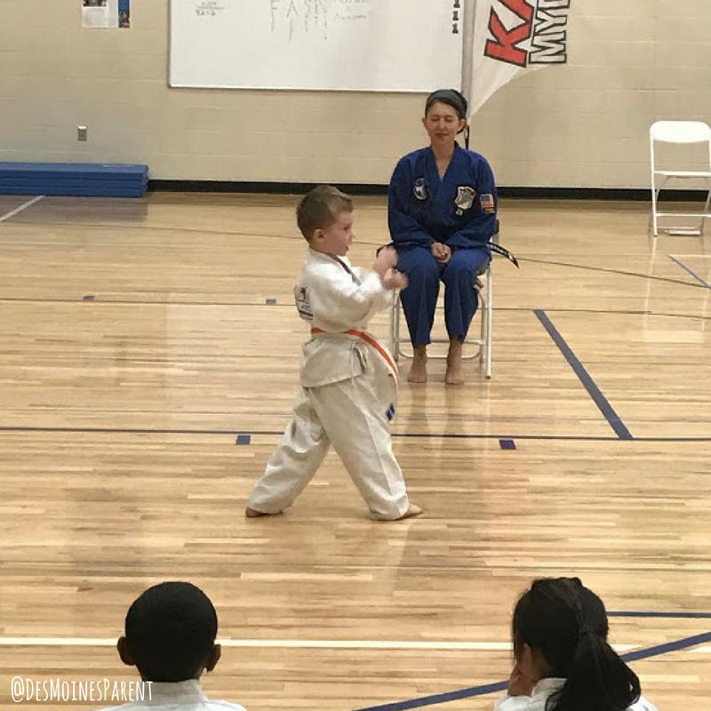Karate, Dojo's Martial Arts