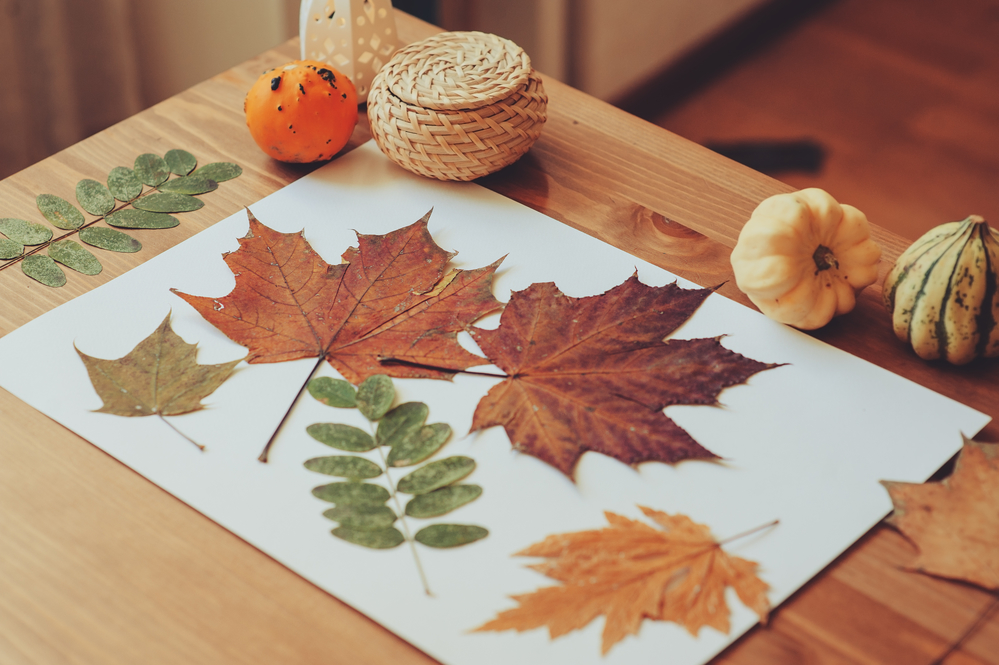 Fall, crafts, leaves, autumn