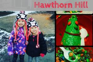 Hawthorn Hill, volunteering, holiday season