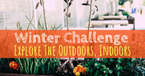 Des Moines Parent, Winter Challenge, Explore The Indoors Outdoors