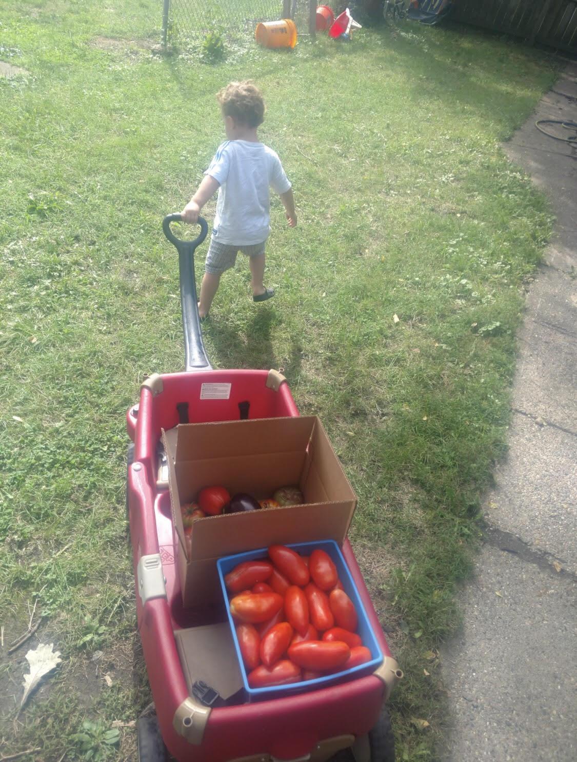 Sweet Tooth Farm, Des Moines, Des Moines Parent Spotlight
