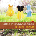Little Miss Sassafrass | The Ultimate Mom Hack