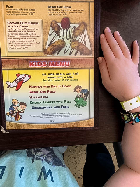 Dining with Kids in Des Moines review at Mi Patria.