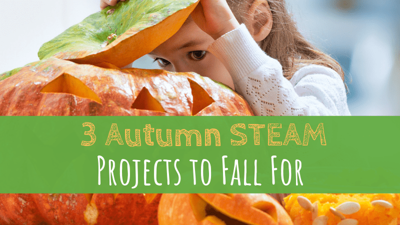3 Autumn STEAM Projects to Fall For