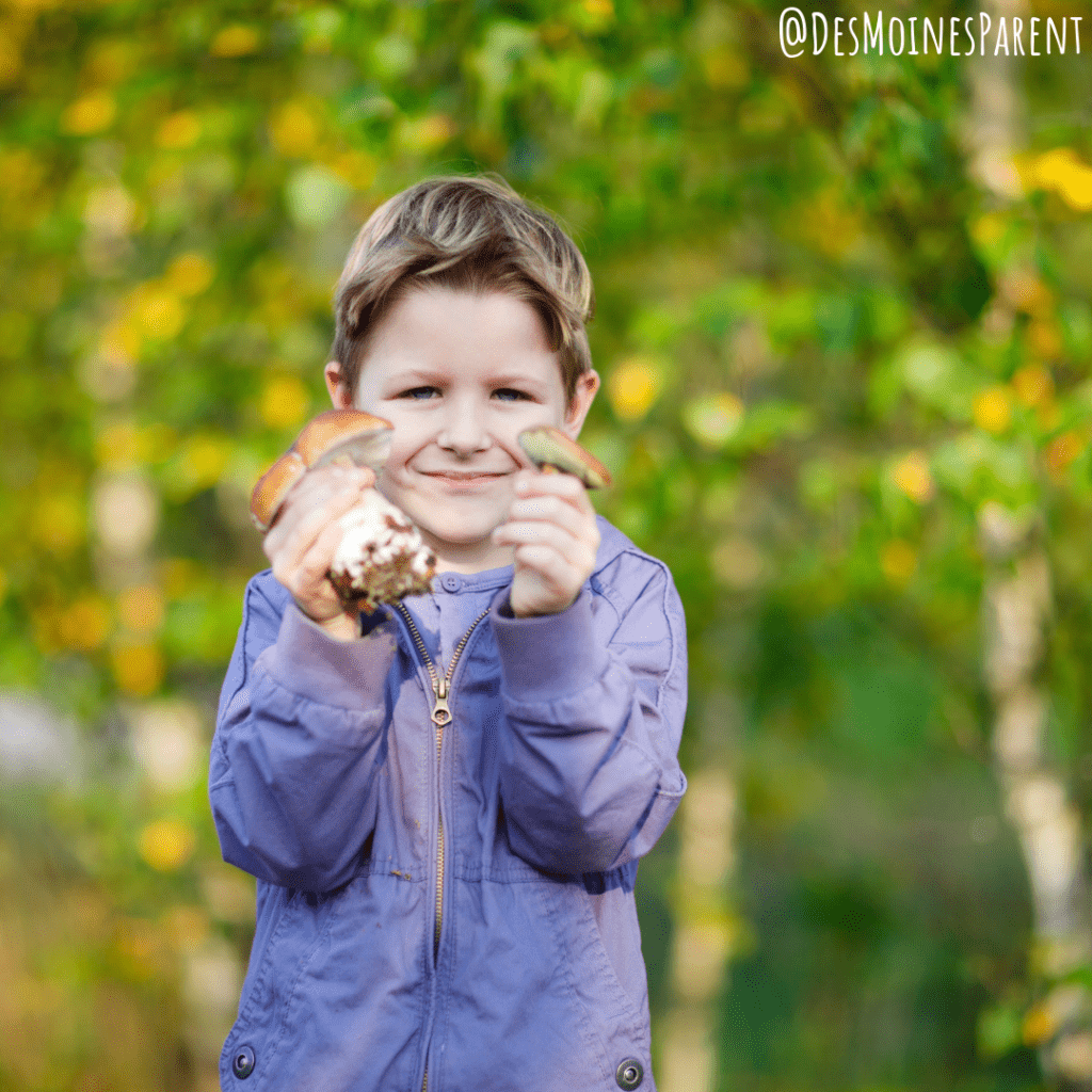 Get ready for fall! Enjoy these 3 Autumn STEAM Projects for Fall for.