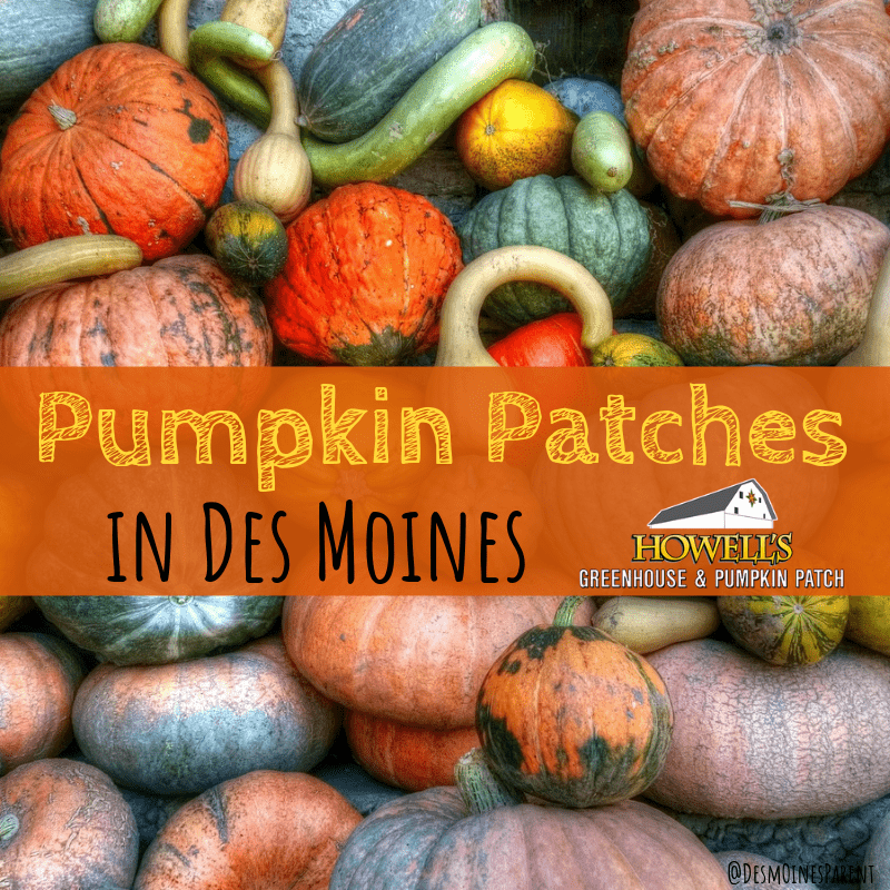 pumpkin patches, Howell's Pumpkin Patch, Des Moines, Iowa, fall