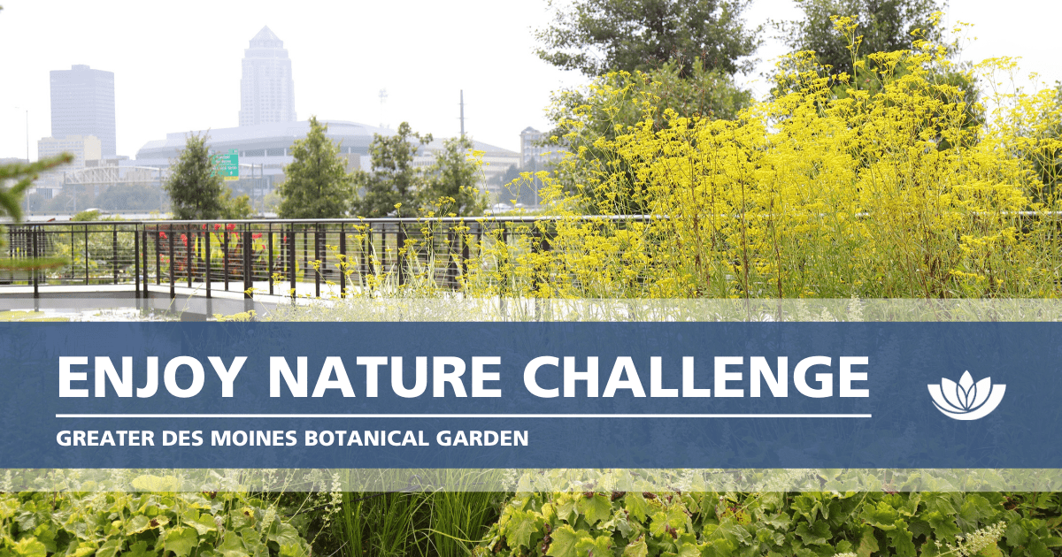 Join In the Botanical Garden's Enjoy Nature Challenge