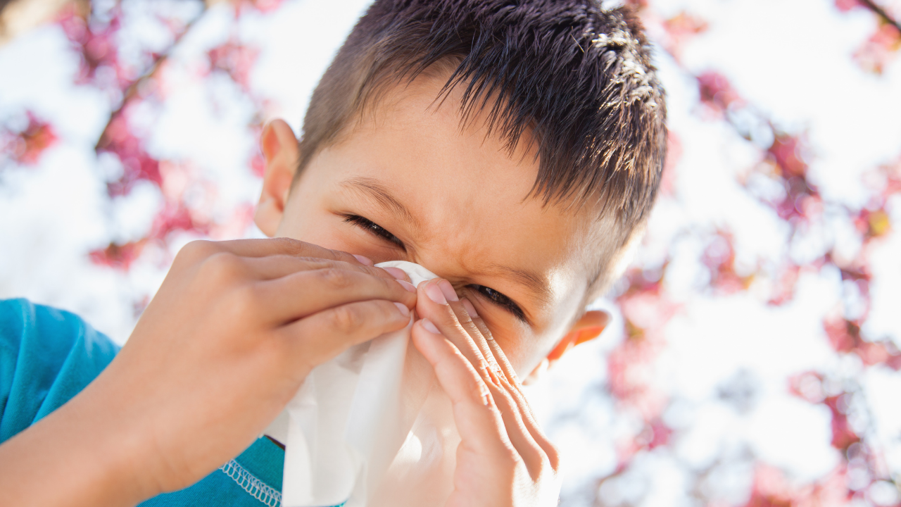 5 Steps to Beat Allergies this Spring