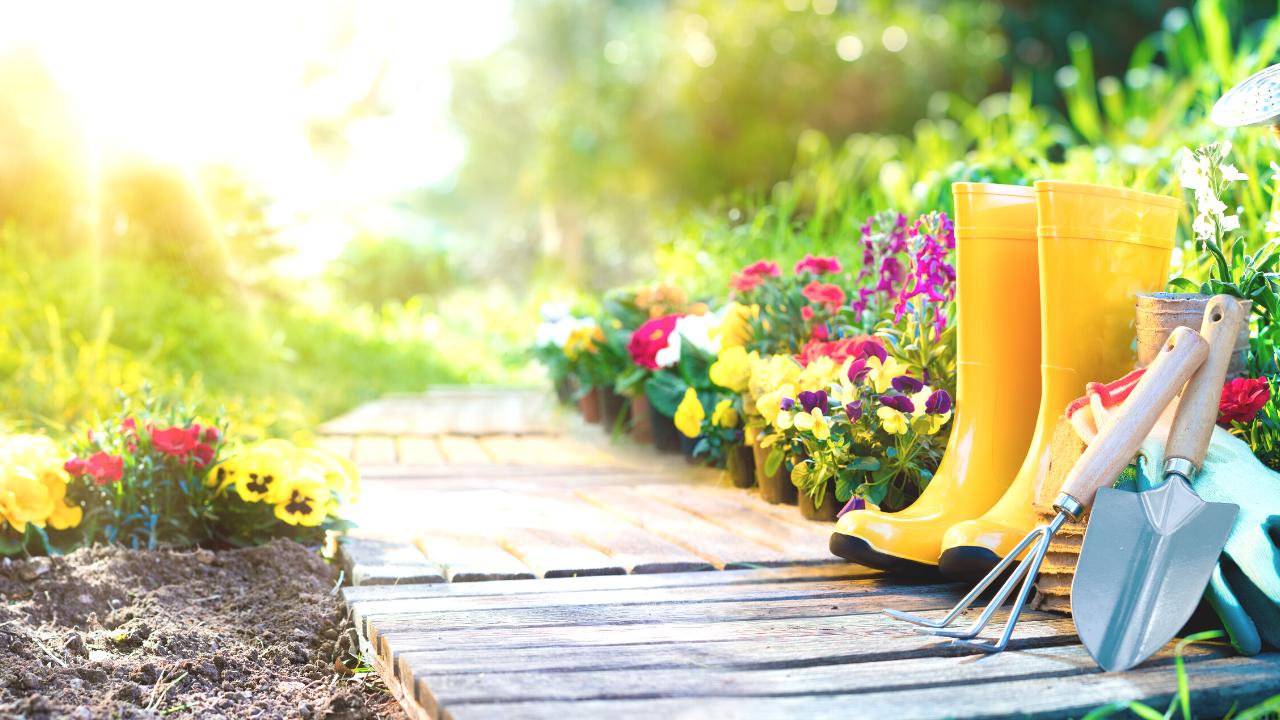 My Five Favorite Spring Gardening Must-Haves