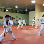 Master Jeong's Tae Kwon Do, Des Moines, Iowa, kids classes, Tae Kwon Do