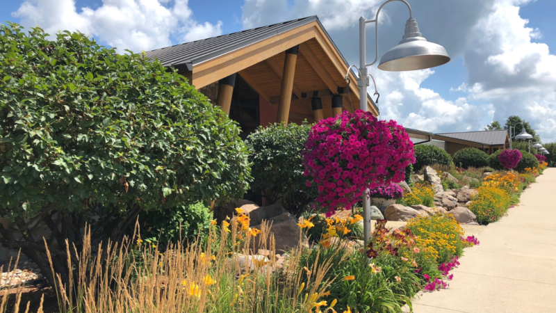 Top Five Reasons Families Should Visit Ted Lare Garden Center