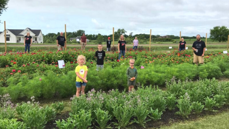Pick Your Own Flowers: Willow Flower Farm