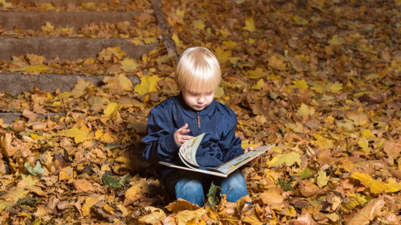 Favorite Fall Books For Children to Embrace the Season Change